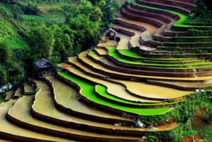 Lao Cai, vietname's regions, Sapa, where should go, Lao Cai province, Sapa's culture