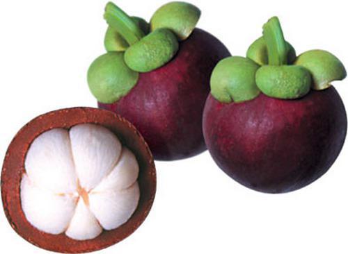 vietnamese fruits, vietnamese mangosteen, vietnam discovery