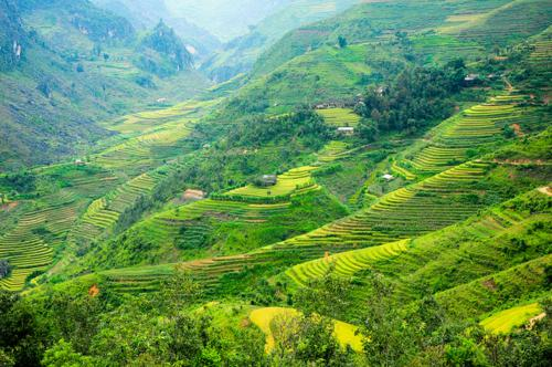 Visit Lung Cu peak in Ha Giang province