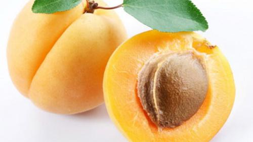 About the Apricot Fruit