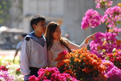 Top of favorite destinations for travelers in Vietnam during the Tet