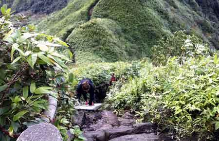 fansipan-climbing