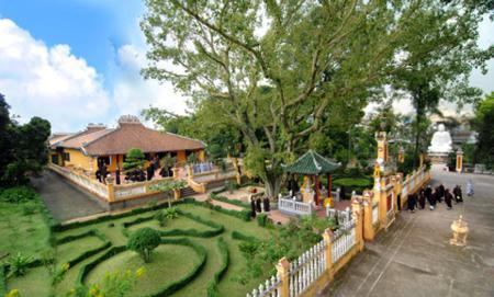 giac lam pagoda, vietnamese pagoda, pagoda in Ho Chi Minh city