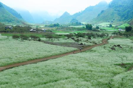 Sop Cop Nature Reserve in Son La province