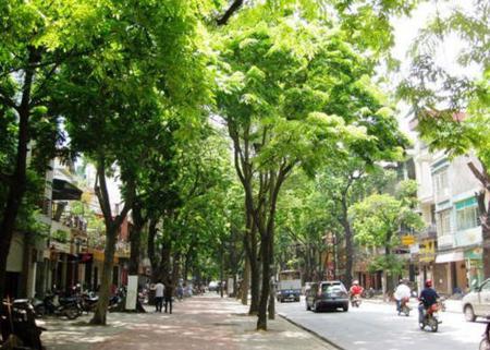 ha noi in photos, ha noi's streets, phan dinh phung street