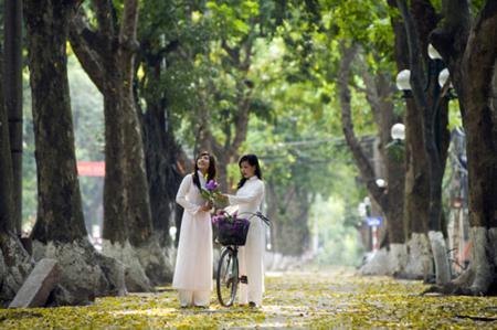 Phan Dinh Phung street in Ha Noi