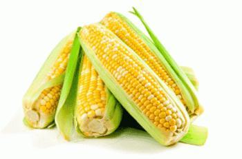 Corn-Bap-ngo