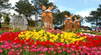 14 activities in Da Lat Flower Festival 2013