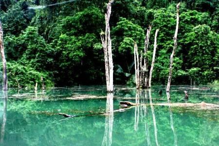 cuc phuong national park landscape
