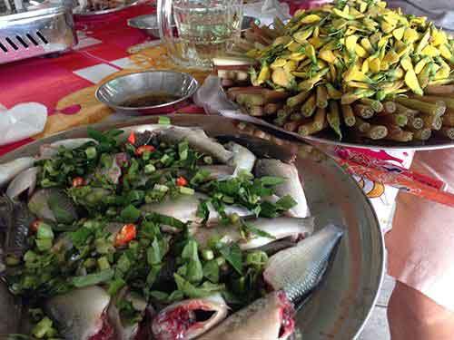 Dong Sen Thap Muoi - eco-tourism in Thap Muoi 2