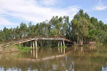 Dong Sen Thap Muoi - eco-tourism in Thap Muoi 3